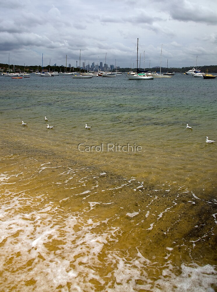 Swimming in the Bay by Carol Ritchie