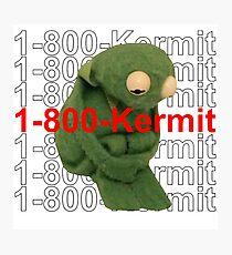 1-800-Kermit Photographic Print