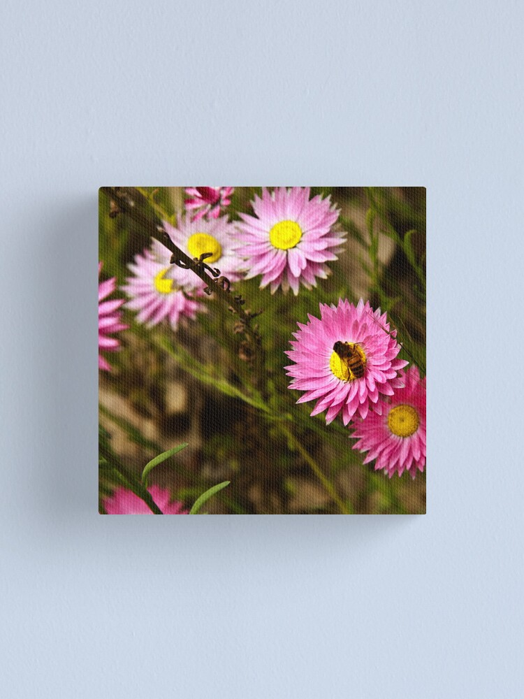 Alternate view of Bee on everlasting Canvas Print