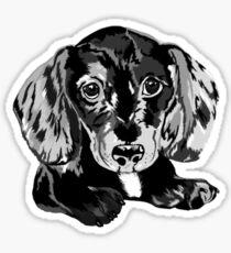 Dapple Dachshund Sticker