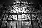 Glasshouse by Andrew Dickman