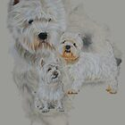 West Highland White Terrier Revamp by BarbBarcikKeith