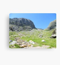 Lienzo The Lake District: Looking up to Scafell