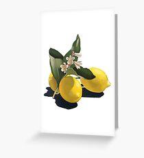 Natural Lemon Greeting Card