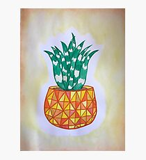 A Succulent Pineapple Photographic Print