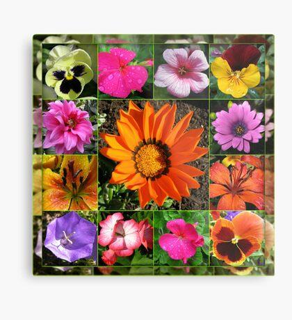 Sunlit Sommer Blumen Collage Metallbild