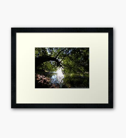 Cool Sanctuary Framed Print