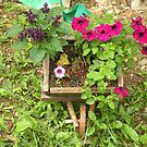 Flower in a wheel barrel by Bonnie Pelton
