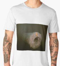 Lost Canon Men's Premium T-Shirt