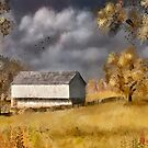 A Barn At The Poffenberger Farm by Lois  Bryan