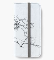 Outreach iPhone Wallet/Case/Skin