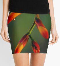 Natures Richness  Mini Skirt
