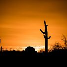 AZ Sunset by chucktaylor1