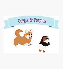 Corgis and Porgies don't mix Photographic Print