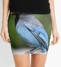 Stellar's Jay With a Beak-full Mini Skirt