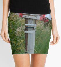 Too Many Bills............ Mini Skirt