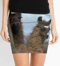 So, Take The Damn Shot! Mini Skirt