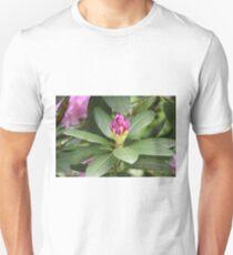 Pruple Flower Close Up Unisex T-Shirt