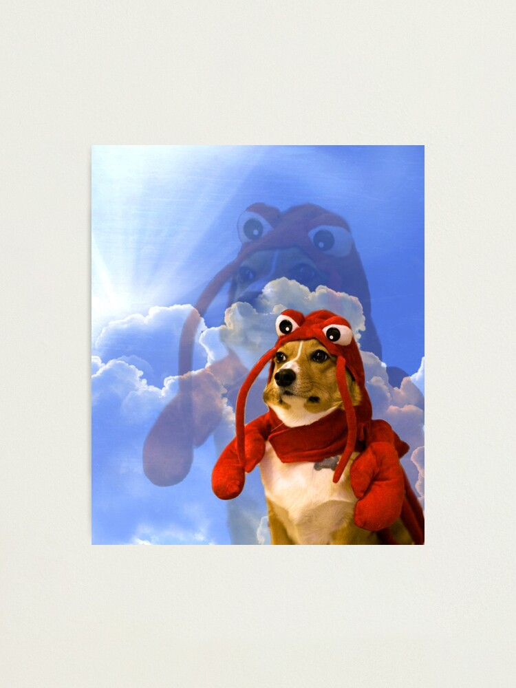 Alternate view of Lobster Corgi, Doggo #1 Photographic Print