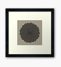 Sunflower Seed Fibonacci Spiral, Golden Ratio, Mathematics, Geometry Framed Print