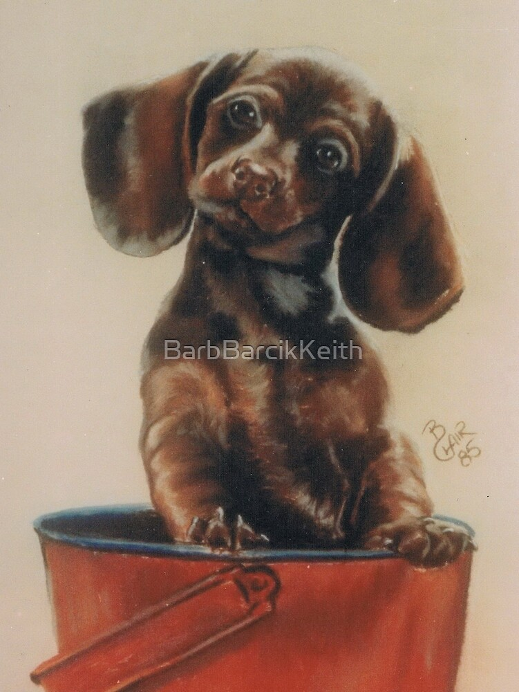 Bucket O' Fun by BarbBarcikKeith
