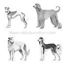 4 Hounds by doggyshop