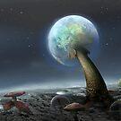 Moon Mushrooms by Igor Zenin