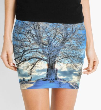 Against the Winter Mini Skirt