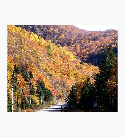 Autumn Splendor-Cabot Trail Photographic Print