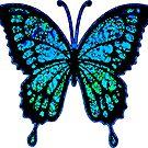 Blue Butterfly by Bronzarino