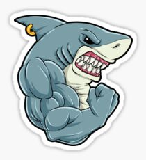 Shark At The Gym - Training Fitness Muscles Shark Sticker