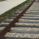 Tracks by Virginia N. Fred