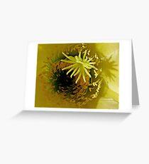 Yellow Cactus Flower Greeting Card