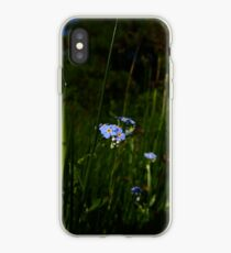Water Forget-me-not (Myosotis scorpioides) iPhone Case
