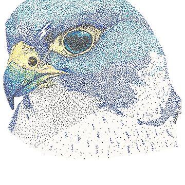 Falcon by Yenrab