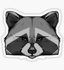 Pitter Patter - Raccoon Sticker