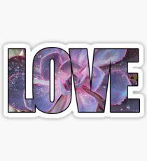 Echeveria Love Sticker