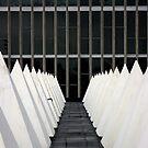 Single file Pyramids  by AJPPhotography