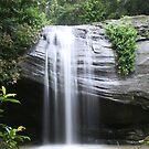 Buderim Waterfall by Emma Tepania