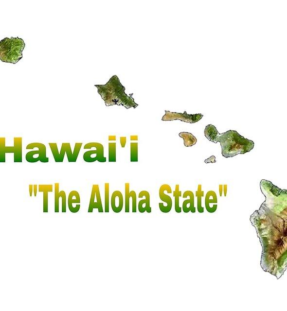 The Aloha State  by WhiteDove Studio kj gordon