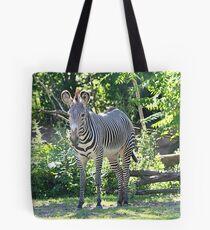 """Think Zebra """"EDS Awareness"""" Tote Bag"""