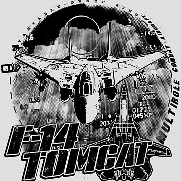 F-14 Tomcat by deathdagger