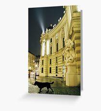 Vienna by night Greeting Card