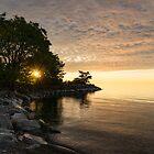 Sunrise Sun Star - Fluffy Down and See-through Silk on the Lakeshore by Georgia Mizuleva
