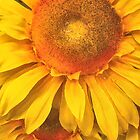 Fake Yellow Sunflowers by TeAnne