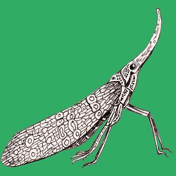 Hong Kong insect by MissARobi