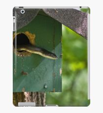Unexpected Guest iPad Case/Skin