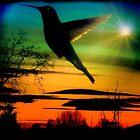 Evening Hummingbird II by Al Bourassa