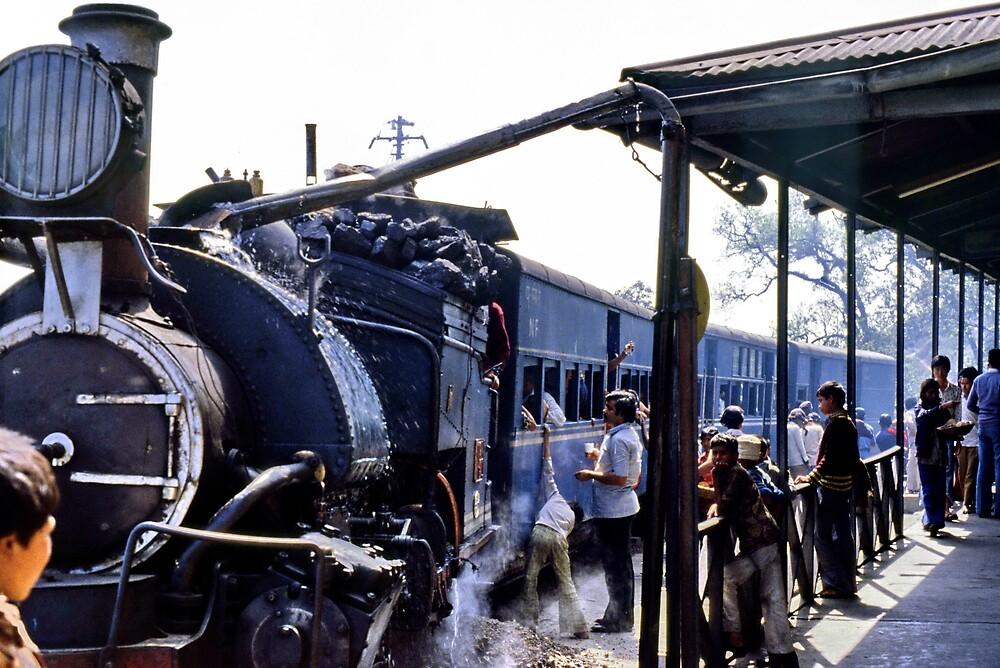 Minature steam train, India by John Spies