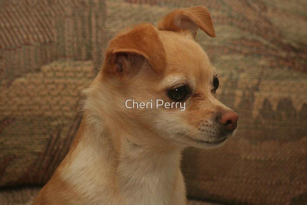 LeeLa Baby  by Cheri Perry